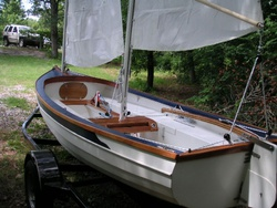 Rigged Lapwing 16